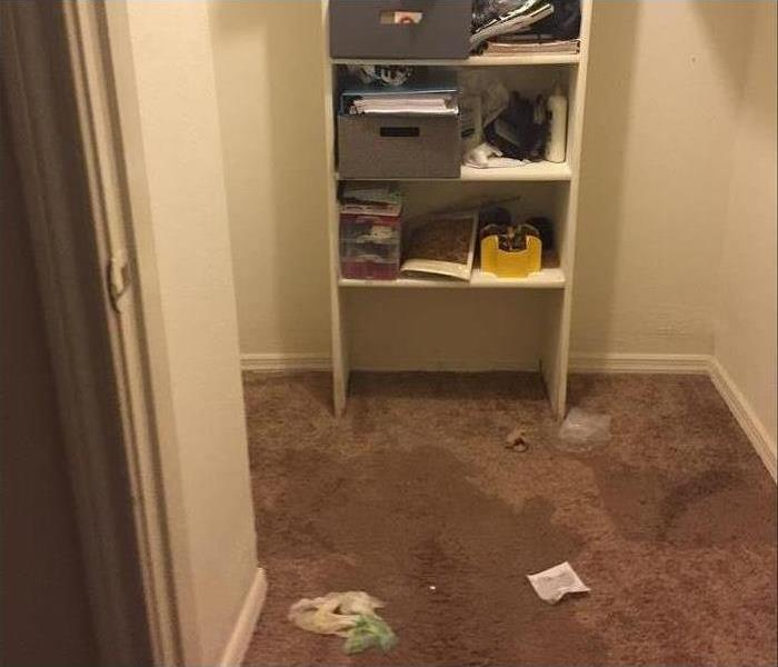 closet with water stain