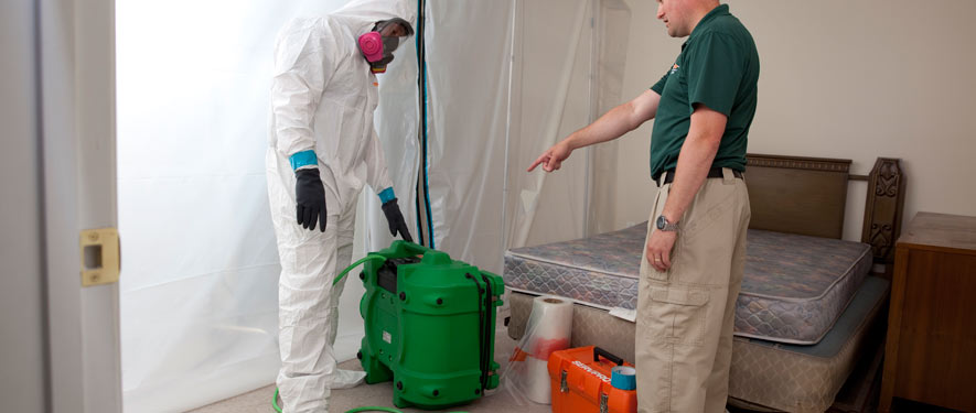 Laurel, MD mold removal process